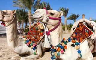 Ägypten, Hurghada, Rotes Meer