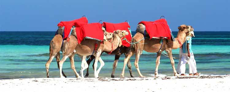 Tunesien, Djerba